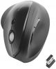 Maus Pro Fit® Ergo - vertikal kabellos schwarz